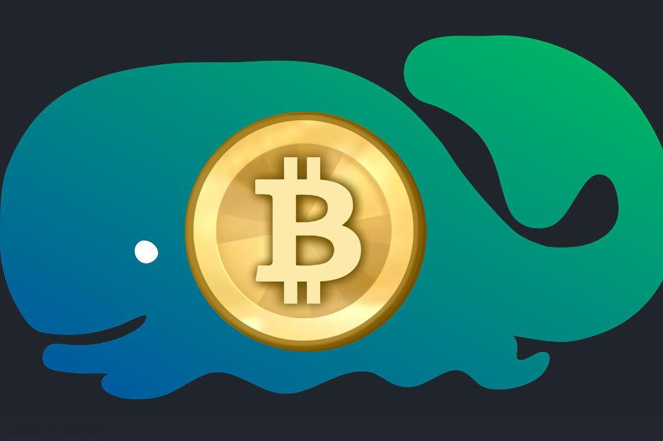 Bitcoin veľryba - Whale