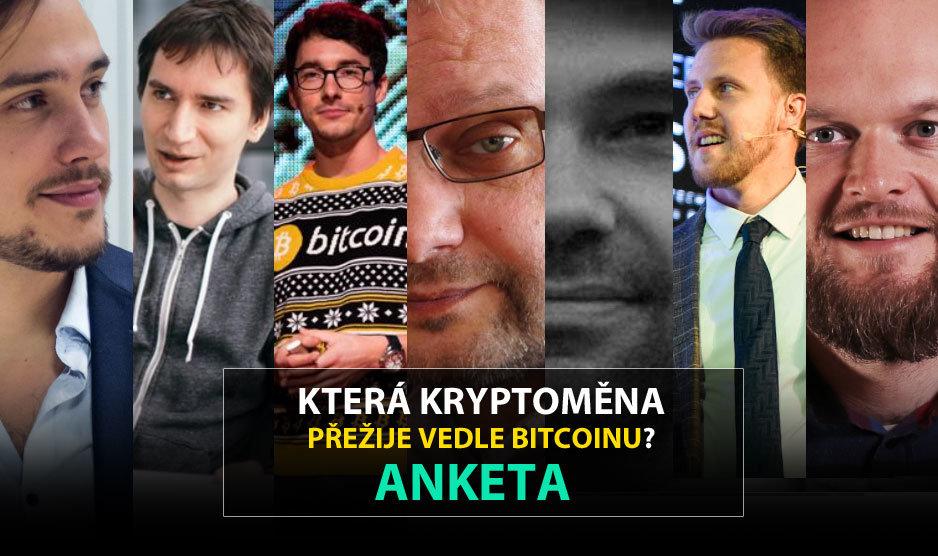 anketa-cz